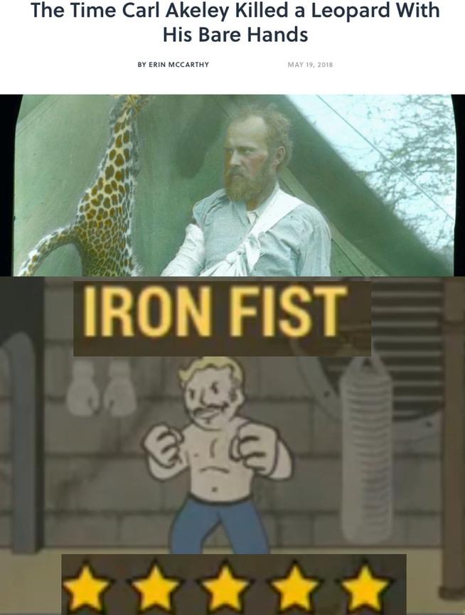 Skyrim Memes