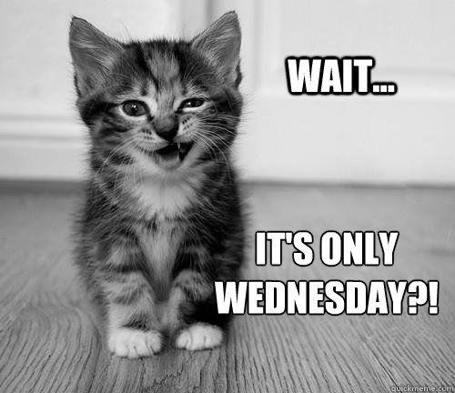 Wednesday Memes