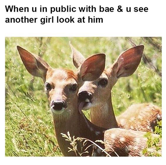 Relationship Memes